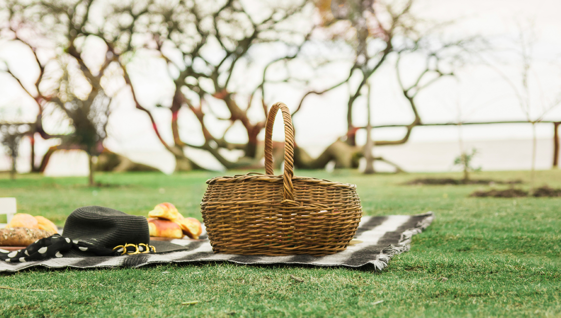 Best Picnic Spots To Go In Singapore