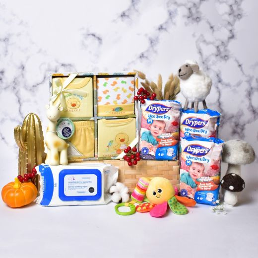 Excellent Essentials for New Baby Gift Hamper