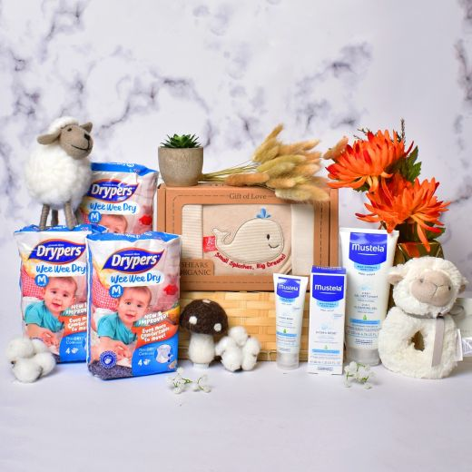 Baby Basics Gift Hamper for New Boy