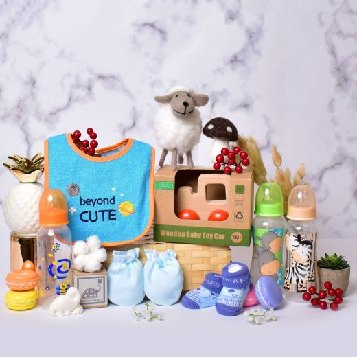 Fun in the Sun Gift Hamper for Baby Boy