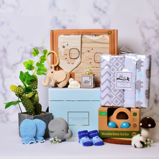 Cozy & Cute Baby Boy Gift Hamper