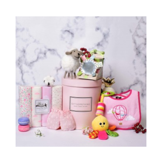 Mr Cuddles Gift Box for Baby Girl
